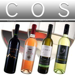 Weinverkostung nach dem COS Schema